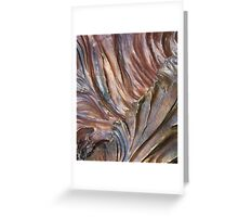 """""""Bronze Valley"""" Greeting Card"""