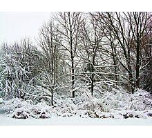 Winter, You Say ~ Hamburg, NY Photographic Print