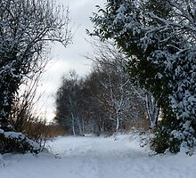 Lonely White Walkway by Eoin Atkins