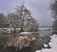 River Stour In Winter - Bournemouth by delros