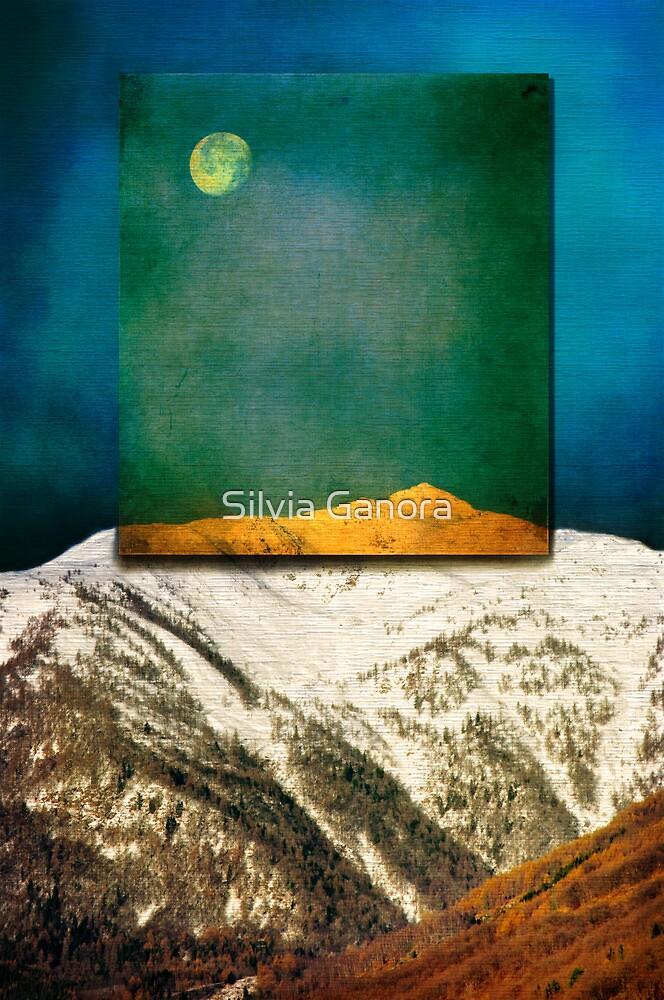 Full Moon by Silvia Ganora
