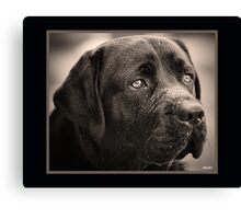 Black Labrador Retriever - My Best Friend Canvas Print