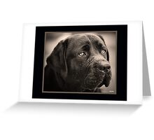 Black Labrador Retriever - My Best Friend Greeting Card