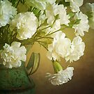 White Carnations by Colleen Farrell