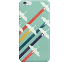 The Cranes iPhone Case/Skin