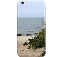 Fence Beside the Beach Path iPhone Case/Skin