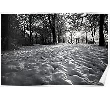 Woods in the snow Poster