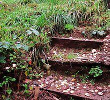 Short Staircase by trueblvr