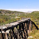 Alaska - The Bridge to Nowhere by Goudy