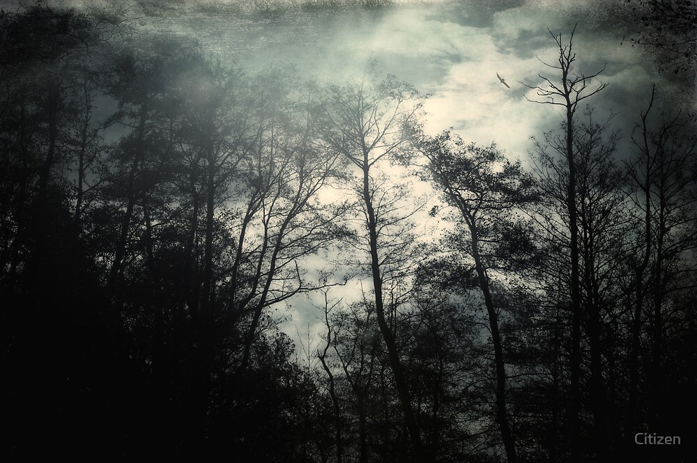 Witches Ov by Nikki Smith