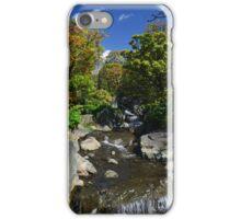 Colourful Stream iPhone Case/Skin