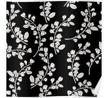 Pattern with graphical roses on black background Poster