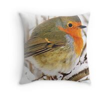 Robin Red Breast Card Throw Pillow