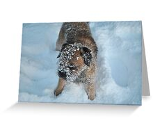 The Art of Disguise!! Greeting Card
