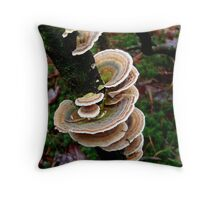 Elfen bankjes - Bracket fungi Throw Pillow