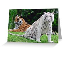 Bengal Tiger Greeting Card