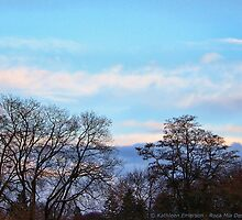 November Sky in Kalispell - South by rocamiadesign