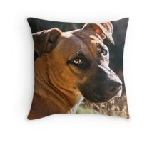 Things We Can Learn from a Dog Throw Pillow