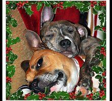 Christmas cuddles by Paula Walker
