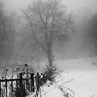 Rusty look in the winter mood by zdepe
