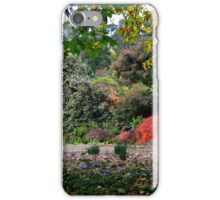 Nooroo - Bev Woodman iPhone Case/Skin