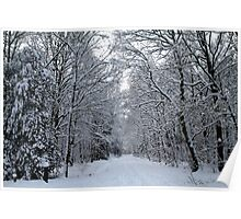 Snowy Avenue Poster