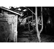 House with trees, August 2010 Photographic Print