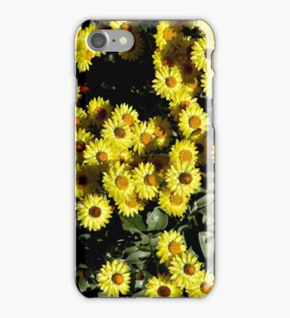 Yellow Daisies - Bev Woodman iPhone Case/Skin