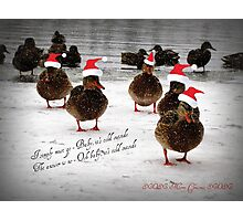 Baby it's cold outside...............................! Photographic Print