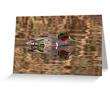 Green Winged Teal Reflections Greeting Card