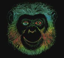 Chimpanzee Monkey by Zehda
