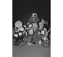 Looking Glass Figures Photographic Print