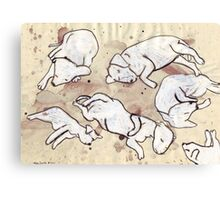 Study For Six Dead Puppies 1 Canvas Print