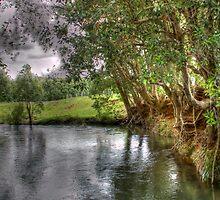 Creek Erosion by JonathanThomsen