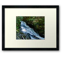 Waterfall on the Skagit River Trail Framed Print