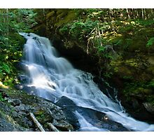 Waterfall on the Skagit River Trail Photographic Print