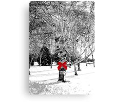 Dreaming of a white Christmas...© Canvas Print