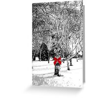 Dreaming of a white Christmas...© Greeting Card