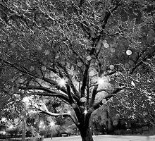 Shimmering Ice Tree by jonnygatt