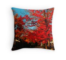 Jamestown NY Throw Pillow