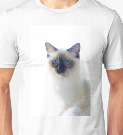 Ragdolls Unisex T-Shirt