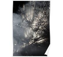 Shinning Through Poster
