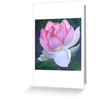 Lotus - rebirth Greeting Card