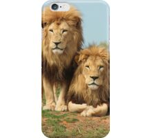 Brothers in Arms - Male Lions iPhone Case/Skin