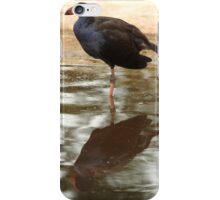 Purple Swamp Hen iPhone Case/Skin