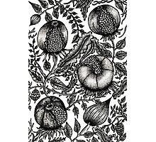 Rotten Fruit Photographic Print