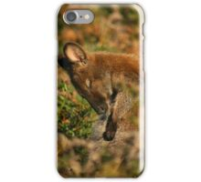 Bennetts Wallaby Grooming iPhone Case/Skin