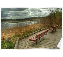Benches at Burnaby Lake Poster