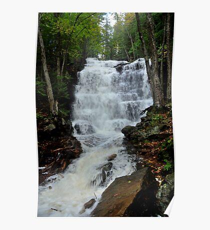 Bear Creek Falls Flowing Fast Poster