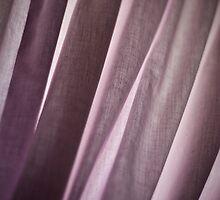 Fabric Draped by Toni Herkalo